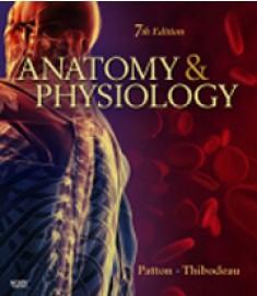 Anatomy & Physiology, 7th Edition