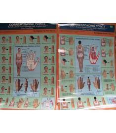 Koryo   Hand Acupuncture Corresponding Chart
