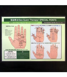 Koryo Hand Therapy - 14 Micro-Meridians(Ki Mek) Points