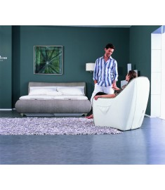 SL-H102 Massage Sofa
